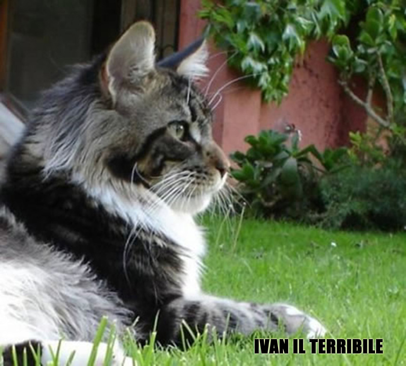 04_Lillycoons-IVAN-IL-TERRIBILE